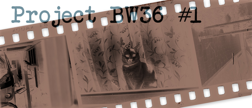 Project BW36 #1